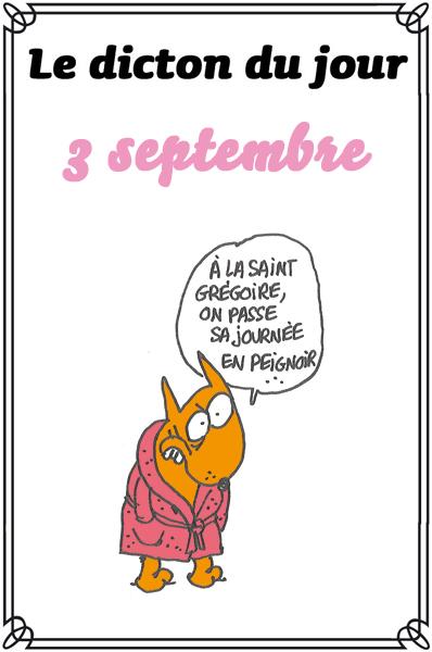 dicton du jour / dicton humour - Page 4 Dicton0903-37a21f4