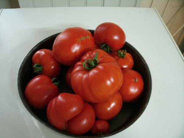La cuisine, vous aimez ? E-et-cie-tomates-...din-2564-36b6fb9