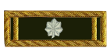 <b><font color=#39552B>Lieutenant-Colonel I</font></b>